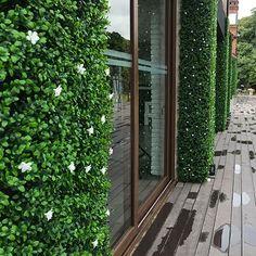 Jardín vertical sin mantenimiento – Just Green