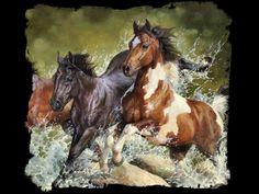 paisajes con caballos salvajes - Buscar con Google