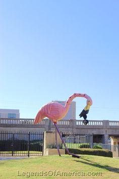 Abilene Texas - Giant Flamingo
