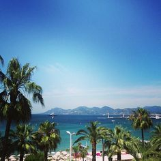 Bonjour Cannes ! Photo by k_marriage