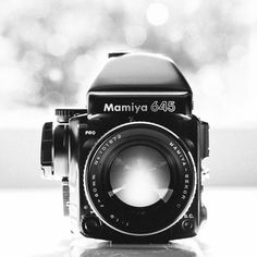 Mamiya 645 Pro- the camera for the Vogue shoot, Davis's last shoot in New York before he left.