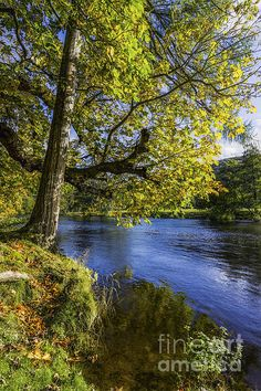 Autumn By The River by Ian Mitchell Beautiful Artwork, Beautiful Places, Beautiful Pictures, Snowdonia National Park, Picture Tree, Some Pictures, Rivers, Lakes, Fine Art America
