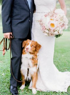 Canine Companion! Don't Forget your Pup for Wedding Photos coordinated by Moana Events