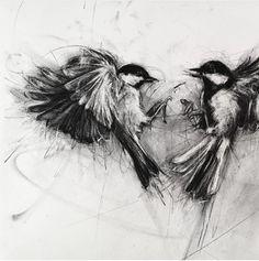 April Coppini Bird Drawings, Animal Drawings, Pencil Drawings, Drawing Birds, Arte Grunge, Types Of Drawing, Love Bears All Things, Art Sketchbook, Printmaking