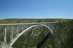 Bloukrans - For many adrenaline junkies, a highlight of visiting the spectacular Tsitsikamma Forest on the Garden Route is to bungee jump off the Bloukrans Bridge. The bridge, which is located 40km from Plettenberg Bay, is the highest single span arch bridge in the world and offers the highest commercially operated bungee jump on earth. Those brave enough walk along a gangway that is tucked under the bridge, before plunging 216m towards the valley below.