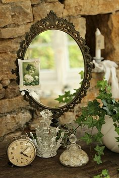 Mirrored ivy