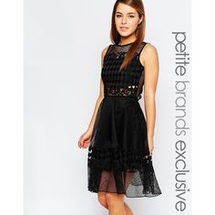 John Zack Petite Cut Work Scallop Lace Skater Dress (82 CAD) ❤ liked on Polyvore featuring dresses, black, petite, scallop hem dress, lining dress, button dress, keyhole back dress and lined dress