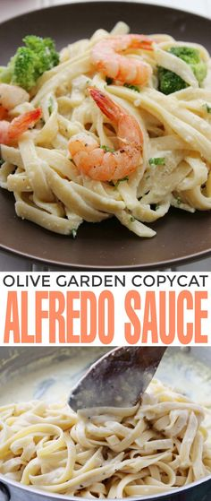This is the BEST Olive Garden Alfredo Sauce Copycat Recipe! If you love Italian Food, you will love this dish (and sauce recipe!)