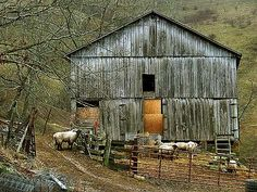 Sheep Barn in West Virginia--Reminds me of my Grandpa's barn :) (Thouth he doesn't raise sheep)