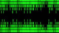 Image result for visual sound art