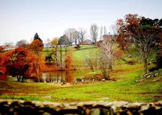 Marriott Ranch is a historic ten room bed & breakfast located on a 4200 acre working cattle ranch in Hume, Virginia.