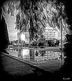 Reflections in Av. Diagonal.