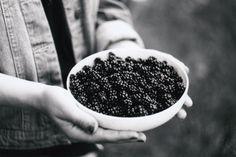 Blackberries, Zenit E, ♥️ Blackberries, Fruit, Film, Movie, Blackberry, Film Stock, Cinema, Films