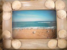 seashell-frame-cockles2