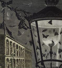 Max Ernst.  Collages de La mujer de 100 cabezas, Editions du Carrefour. 1929. Y las mariposas comenzaron a cantar.