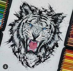 Disegno tigre bianca