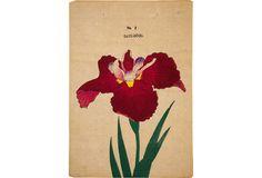 Extraordinarily beautiful Japanese wood lock print of iris, Date-Dogu, on fine Japanese paper, early 20th century.