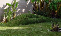This sod sofa in Greg Tate's California yard , giving new meaning to outdoor furniture.The California architect has taught people to sculpt furniture out of the lawn itself. He's not the only one: In fact, Cornell University horticulture professor Marcia Eames-Sheavly teaches how to make outdoor furniture using sod in just one day. Students have made chaise lounges, easy chairs and sofas around campus.  water-intensive,