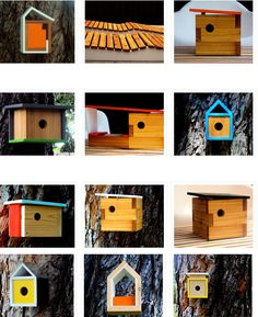 Modern Bird house haha cute.