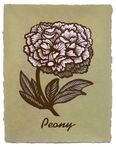 Peony ~ Martin Mazorra ~ Woodcut and letterpress print on color handmade paper, custom made in Brooklyn at Carriage House Paper. Dark brown ink. Paper varies in texture. Edition of 20.