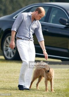 Prince William, Duke of Cambridge pats a dog before taking part in the Audi Polo Challenge at Coworth Park Polo Club on May 28, 2016 in Ascot, England.