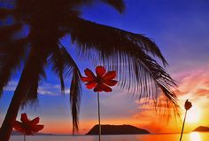nice Koh Phangan . Thailand   .. dec 98