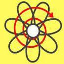 Los siete dominios de acción permacultural: La Flor de la Permacultura