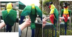 felt parrot (jenday conure) for Pirate costume  Sun Conure Pattern by Silver Seams,  this example made by Corsetra