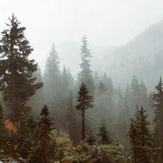 Foggy layers of Snow Lake Trail Washington (OC) [1023x1023] sarah__ahearn http://ift.tt/2yEgRC6 October 10 2017 at 06:50PMon reddit.com/r/ EarthPorn