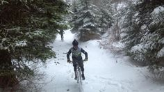 Redstone Cyclery » sun-rain or snow they go