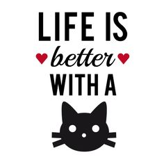 Life is better with a cat (or cats)