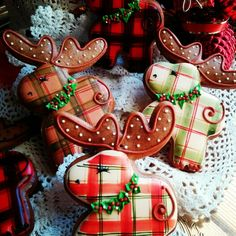 Christmas moose decorated gingerbread cookies