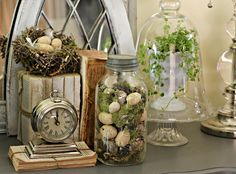 """Terrariums"" in mason jars"