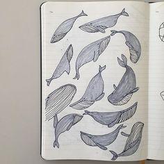 2015.10.29 둥둥.  # #고래 #드로잉 #일러스트 #아트웍 #낙서 #플러스펜 #동물그림 #gray #whale #swim #drawing #illustration #artwork #doodling #penemotion