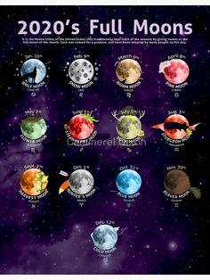 New Moon Rituals, Full Moon Ritual, Full Moon Spells, Sleep Rituals, Magia Elemental, Witchcraft For Beginners, Wicca For Beginners, Moon Calendar, Calendar Calendar