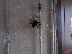 L'araignée Aragog