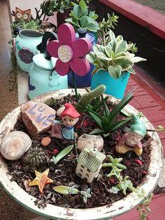 Reciclado de contenedores en mis plantas!