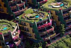 urban gardens - Google Search