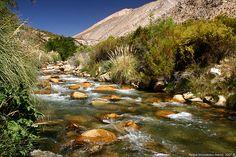 Valle del Elqui, Chile / El Valle de Elqui, llamado antiguamente también como Valle de Coquimbo, es una cuenca hidrográfica ubicada en la provincia de Elqui, Región de Coquimbo, en Chile