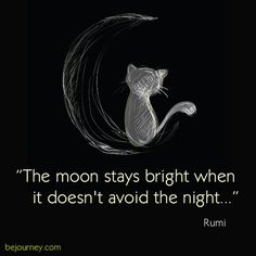 """The moon stays bright when it doesn't avoid the night."" Rumi"