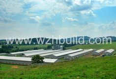 Hebei Weizhengheng Modular House Technology Co. Farm Shed, Farm House, Roof Boards, Poultry Farming, Poultry House, Steel Structure Buildings, Home Technology, Prefab, Building Design