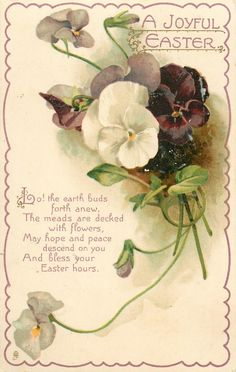 A JOYFUL EASTER  pansies