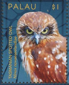 Morepork stamps - mainly images - gallery format Postage Stamp Collection, Stamp Catalogue, Spotted Owl, World Birds, Vintage Stamps, Owl Art, Stamp Collecting, Illustrations Posters, Artwork