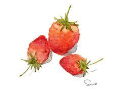 strawberries【shine 水彩】