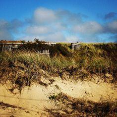The breathtaking North Truro dunes of #CapeCod #massachusetts #visitma