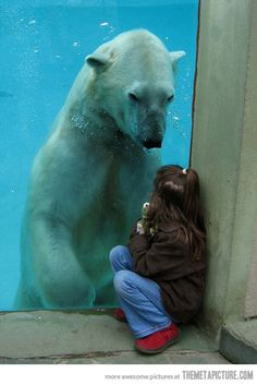 I do not post  animals in captivity, but this is a special photo. What a kind soul this bear is, despite his misfortune! I can only look in awe and learn.