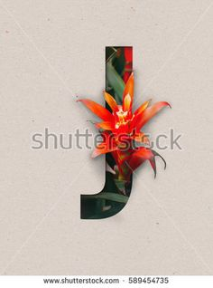 Unique Letter J alphabet made of real blooming flowers and leaves with paper cut. Illustration of floral alphabet collection for design project, poster, card, invitation, brochure and scrapbook
