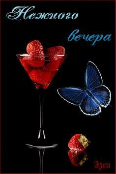 Позитивные фото. Живые картинки. Бабочки. Good Evening Greetings, Live Picture, Movie Posters, Beverages, Beautiful Images, Film Poster, Billboard, Film Posters