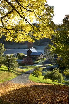 Cloud land farm, Vermont | by betty wiley