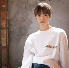David Lee, Lee Daehwi, Ong Seongwoo, Kim Jaehwan, Ha Sungwoon, Jinyoung, Graphic Sweatshirt, Entertainment, Seasons